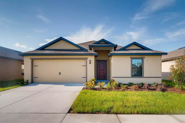 6965 Crested Orchid Drive, Brooksville, FL 34602 (MLS #T3215904) :: Team Bohannon Keller Williams, Tampa Properties