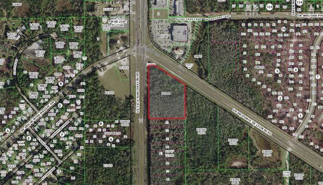 7138 W Ponce De Leon Boulevard, Homosassa, FL 34446 (MLS #T3215942) :: The Light Team