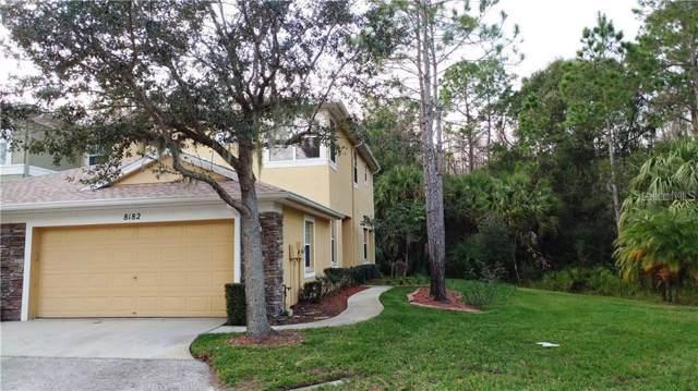 8182 Stone View Drive, Tampa, FL 33647 (MLS #T3215974) :: Team Bohannon Keller Williams, Tampa Properties