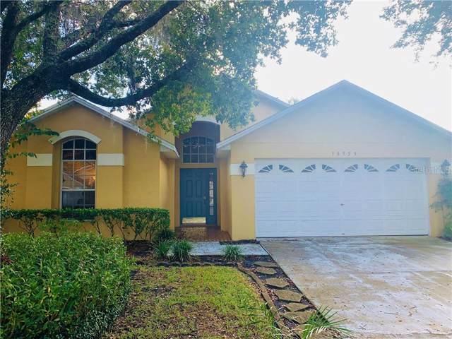 18959 Wood Sage Drive, Tampa, FL 33647 (MLS #T3216036) :: Team Bohannon Keller Williams, Tampa Properties