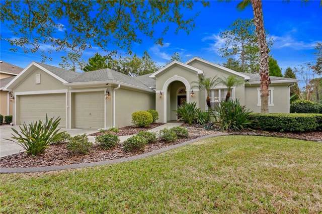 16141 Colchester Palms Drive, Tampa, FL 33647 (MLS #T3216215) :: GO Realty