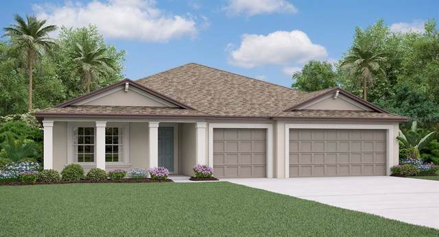 10835 Crushed Grape Drive, Riverview, FL 33578 (MLS #T3216217) :: EXIT King Realty