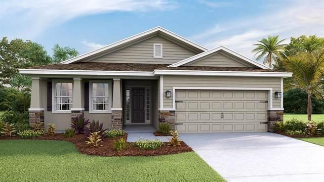 13819 Camden Crest Terrace, Lakewood Ranch, FL 34211 (MLS #T3216269) :: The Figueroa Team