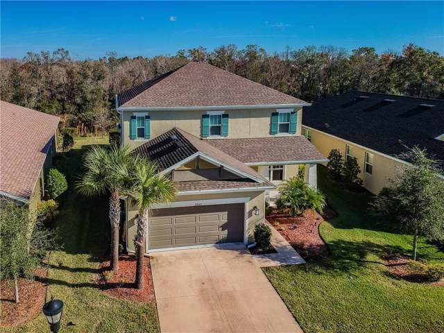27043 Carolina Aster Drive, Wesley Chapel, FL 33544 (MLS #T3216351) :: Premier Home Experts