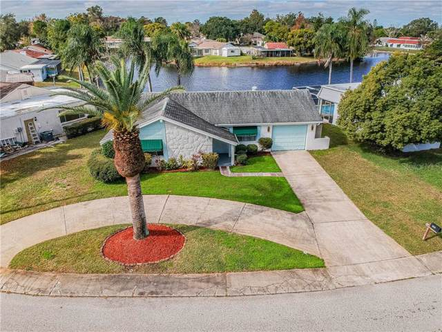 3401 Springfield Drive, Holiday, FL 34691 (MLS #T3216369) :: Armel Real Estate