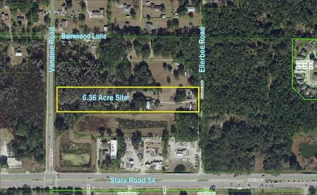 5847- 5853 Ellerbee Road, Wesley Chapel, FL 33545 (MLS #T3216535) :: Rabell Realty Group