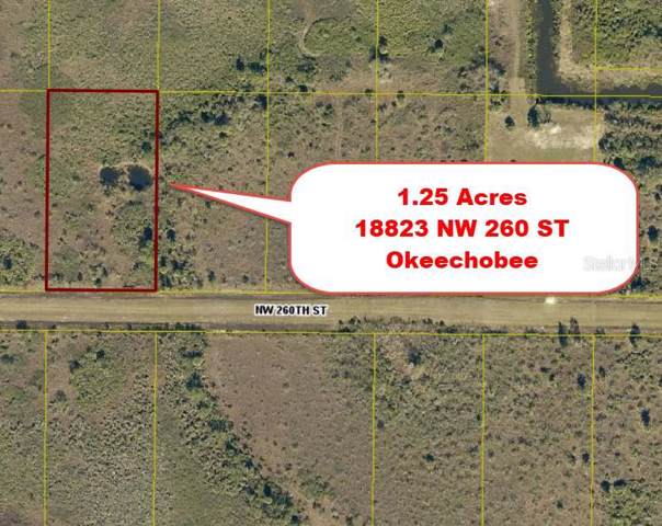 18823 NW 260TH Street, Okeechobee, FL 34972 (MLS #T3216675) :: GO Realty