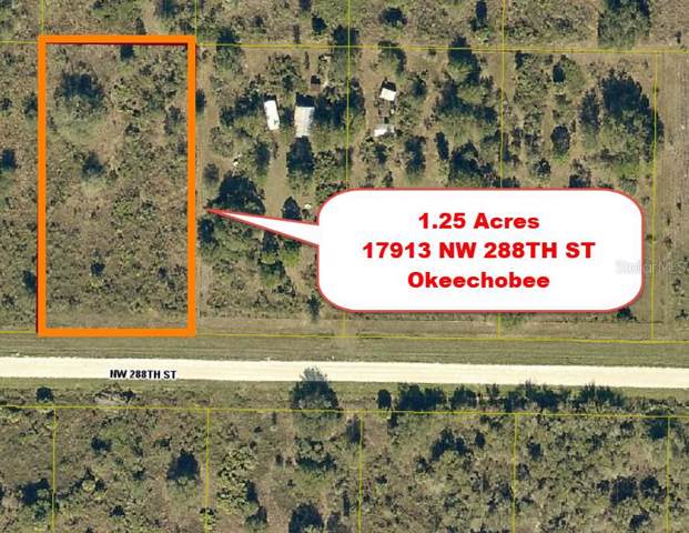 17913 NW 288TH Street, Okeechobee, FL 34972 (MLS #T3216679) :: GO Realty