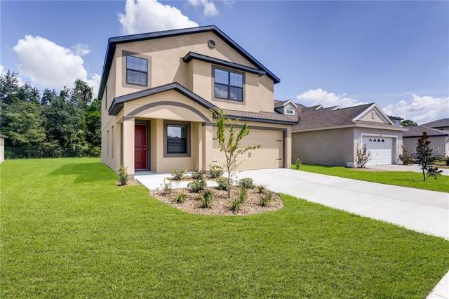 6936 Redbay Drive, Brooksville, FL 34602 (MLS #T3216718) :: Team Bohannon Keller Williams, Tampa Properties