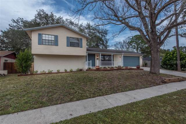 15803 Deep Creek Lane, Tampa, FL 33624 (MLS #T3216923) :: Griffin Group
