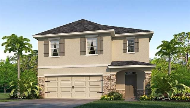 5835 Calla Lilly Drive, Sarasota, FL 34232 (MLS #T3217249) :: Armel Real Estate