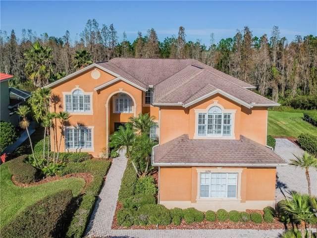 10746 Cory Lake Drive, Tampa, FL 33647 (MLS #T3217309) :: Team Bohannon Keller Williams, Tampa Properties