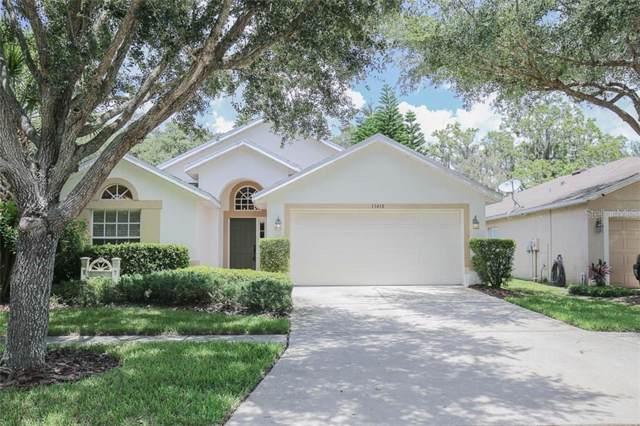 15418 Osprey Glen Drive, Lithia, FL 33547 (MLS #T3217379) :: GO Realty