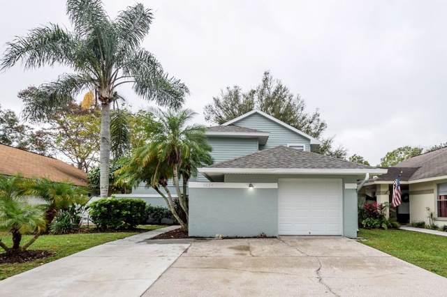 6024 Lemon Tree Court, Tampa, FL 33625 (MLS #T3217393) :: Armel Real Estate