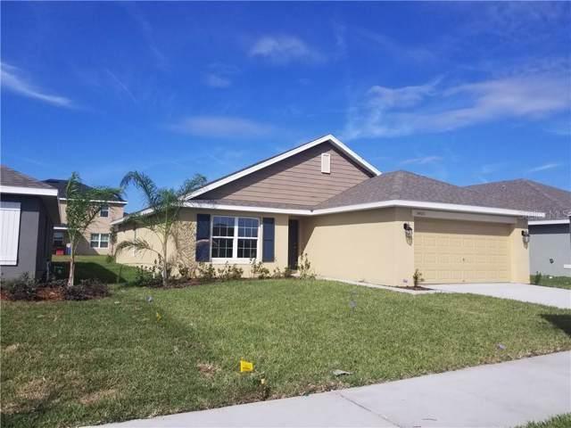 14506 Dunrobin Drive, Wimauma, FL 33598 (MLS #T3217407) :: Team Bohannon Keller Williams, Tampa Properties