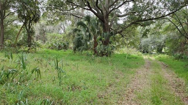 2ND Avenue NE, Ruskin, FL 33570 (MLS #T3217486) :: Premium Properties Real Estate Services