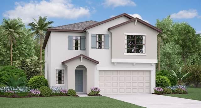 5216 Olano Street, Palmetto, FL 34221 (MLS #T3217517) :: Gate Arty & the Group - Keller Williams Realty Smart