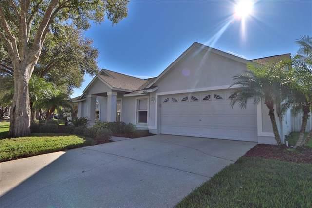 9213 Sunflower Drive, Tampa, FL 33647 (MLS #T3217581) :: Team Bohannon Keller Williams, Tampa Properties