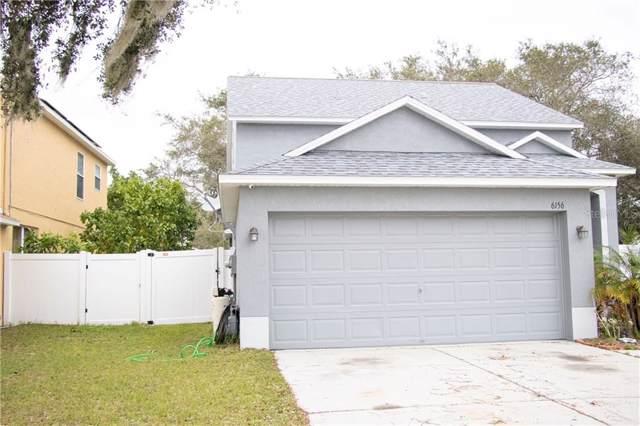6156 Lanshire Drive, Tampa, FL 33634 (MLS #T3217586) :: Armel Real Estate