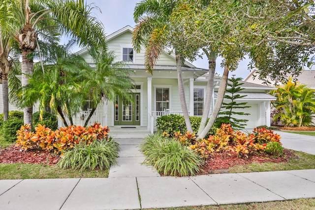 5616 Skimmer Drive, Apollo Beach, FL 33572 (MLS #T3217734) :: Premium Properties Real Estate Services