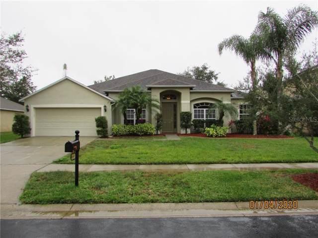 27220 Fordham Drive, Wesley Chapel, FL 33544 (MLS #T3217811) :: 54 Realty