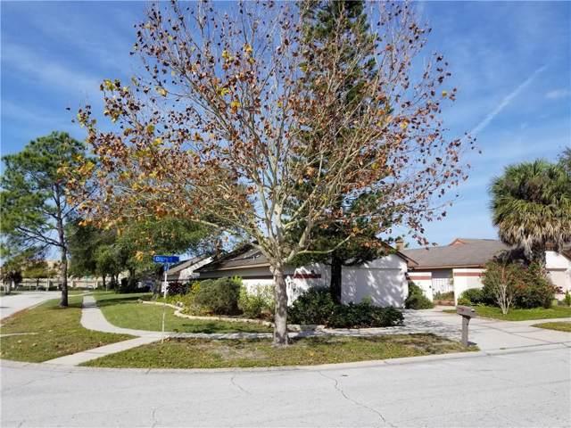 7002 Drury Street, Tampa, FL 33635 (MLS #T3217933) :: Pristine Properties