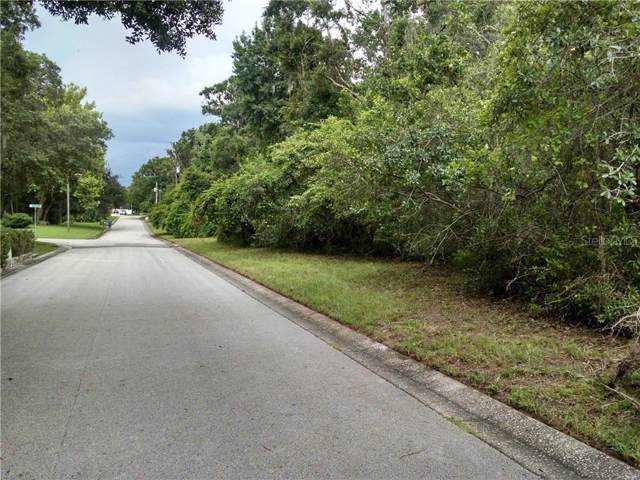 Tralee Drive, Riverview, FL 33569 (MLS #T3217935) :: Griffin Group