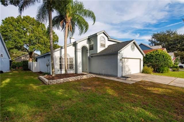 14505 Nettle Creek Road, Tampa, FL 33624 (MLS #T3217949) :: Medway Realty