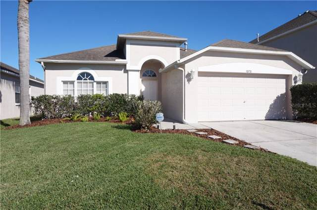 10731 Eveningwood Court, Trinity, FL 34655 (MLS #T3217962) :: Griffin Group