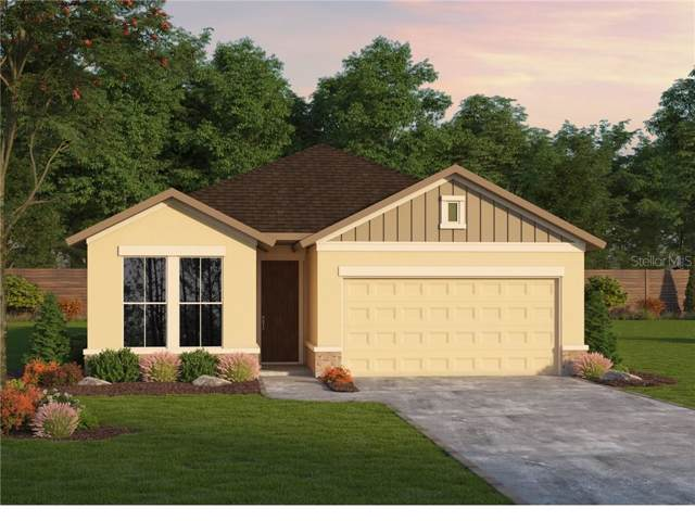 6118 Plover Meadow Street, Lithia, FL 33547 (MLS #T3217980) :: Premier Home Experts