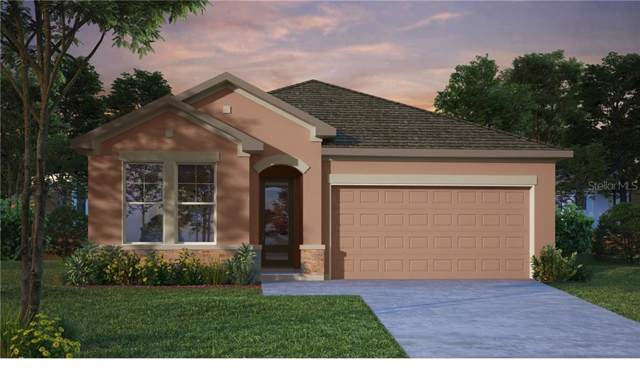 6033 Plover Meadow Street, Lithia, FL 33547 (MLS #T3217984) :: Cartwright Realty