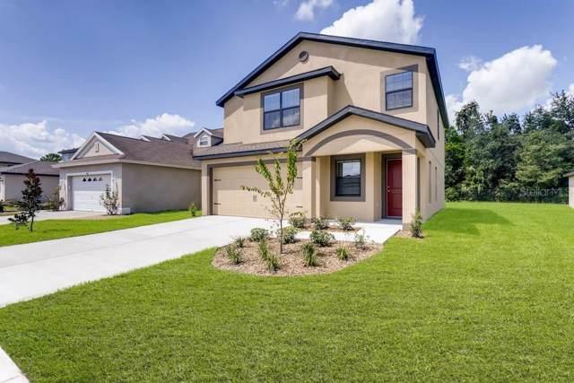 6710 Redbay Drive, Brooksville, FL 34602 (MLS #T3218013) :: Team Bohannon Keller Williams, Tampa Properties