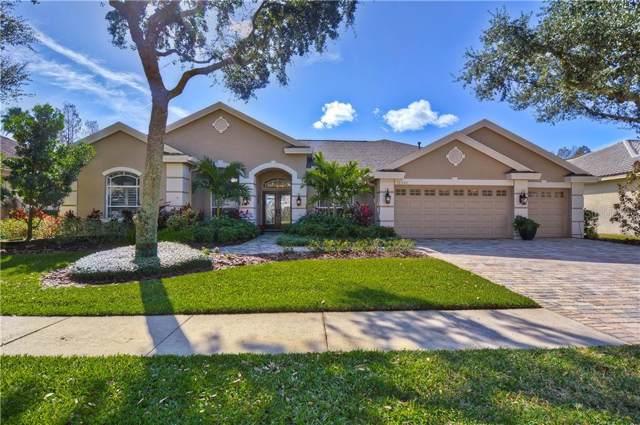 10522 Greensprings Drive, Tampa, FL 33626 (MLS #T3218019) :: 54 Realty