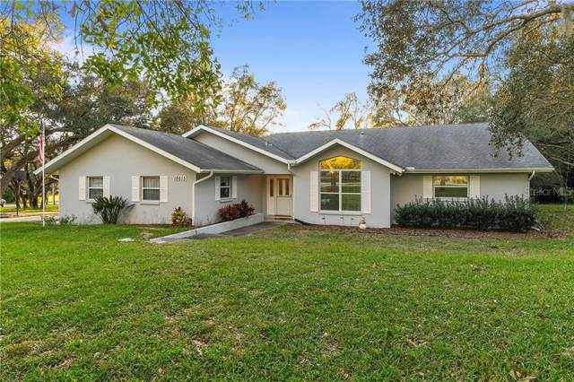 18615 Anglewood Drive, Hudson, FL 34667 (MLS #T3218041) :: McConnell and Associates