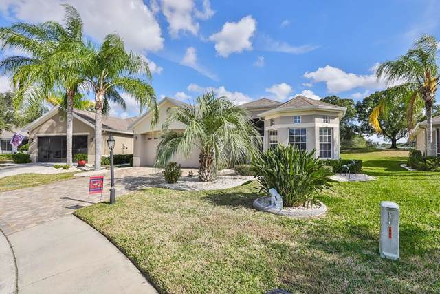 706 Camellia Green Drive, Sun City Center, FL 33573 (MLS #T3218048) :: Premier Home Experts