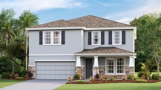 16416 Woodside Glen, Parrish, FL 34219 (MLS #T3218064) :: Team Bohannon Keller Williams, Tampa Properties