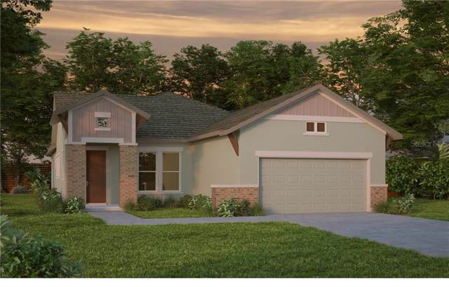 6003 Burrowing Owl Place, Lithia, FL 33547 (MLS #T3218069) :: Premier Home Experts