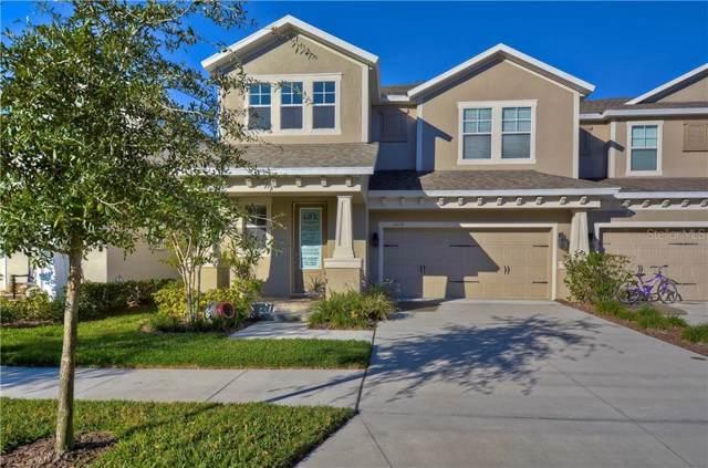 14614 Rocky Brook Drive, Tampa, FL 33625 (MLS #T3218078) :: Team Bohannon Keller Williams, Tampa Properties