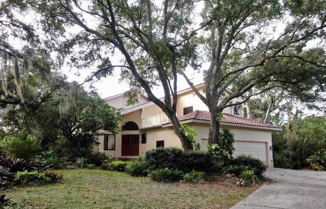12802 Twin Branch Acres Road, Tampa, FL 33626 (MLS #T3218113) :: Cartwright Realty