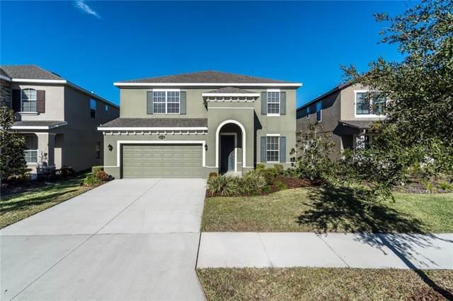 19225 Verdant Pasture Way, Tampa, FL 33647 (MLS #T3218117) :: Armel Real Estate