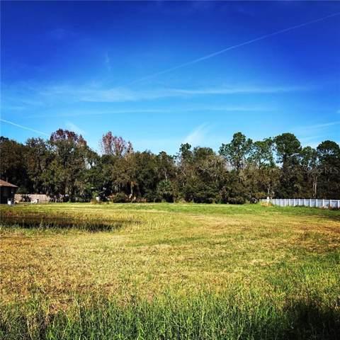 19154 Red Bird Lane, Lithia, FL 33547 (MLS #T3218174) :: Cartwright Realty