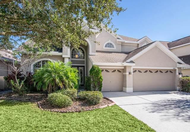 17833 Arbor Creek Drive, Tampa, FL 33647 (MLS #T3218205) :: Florida Real Estate Sellers at Keller Williams Realty