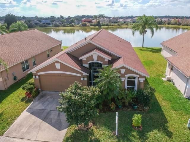 28826 Raindance Avenue, Wesley Chapel, FL 33543 (MLS #T3218294) :: The Duncan Duo Team