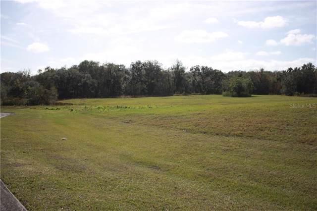 209 Alafia Estates Lane, Plant City, FL 33567 (MLS #T3218505) :: The Light Team