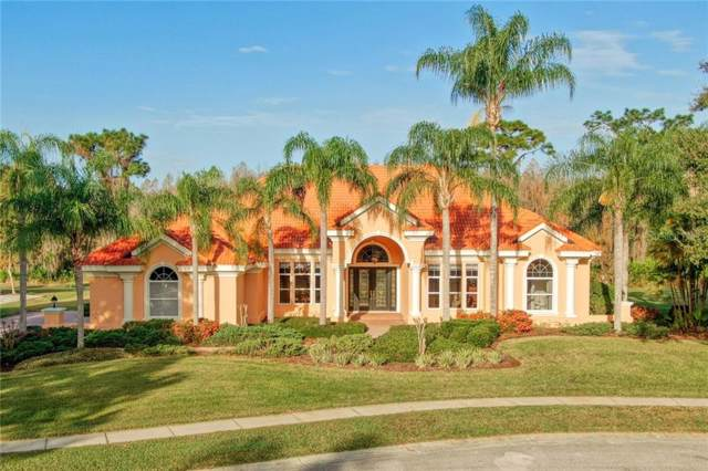 18140 Longwater Run Drive, Tampa, FL 33647 (MLS #T3218599) :: Premier Home Experts