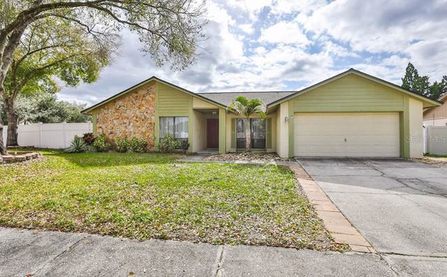 1223 Callista Avenue, Valrico, FL 33596 (MLS #T3218607) :: GO Realty