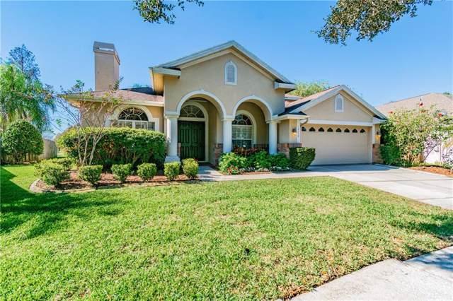 10350 Abbotsford Drive, Tampa, FL 33626 (MLS #T3218657) :: 54 Realty