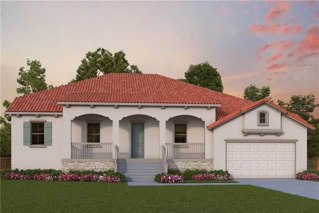681 Santa Maria Drive, Tierra Verde, FL 33715 (MLS #T3218728) :: Lockhart & Walseth Team, Realtors