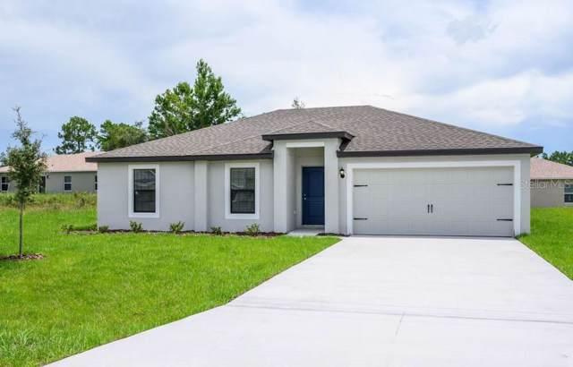 1645 Luft Lane, Mascotte, FL 34753 (MLS #T3218762) :: Premium Properties Real Estate Services