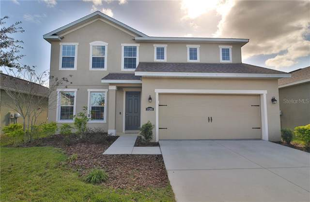 11205 Spring Point Circle, Riverview, FL 33579 (MLS #T3218769) :: Premier Home Experts